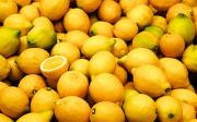 Léčivé účinky citronu